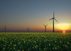 energie-rinnovabili-eolico