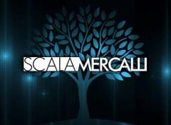 scala-mercalli-logo_5